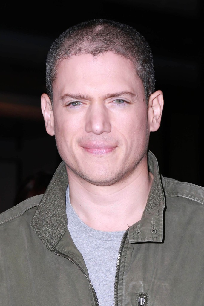 Wentworth Miller comes out as gay | THEGAYUK